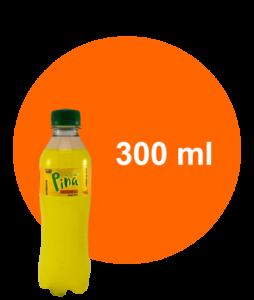 slider-pina-300