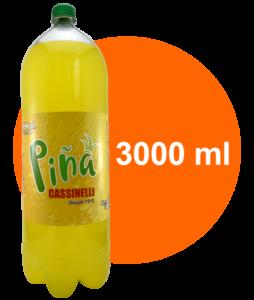 slider-pina-3000